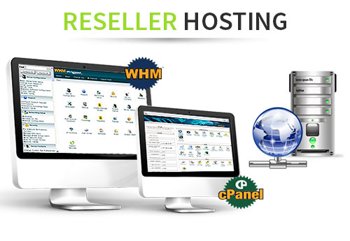 Choose a fine-tuned Linux Reseller Hosting solution!